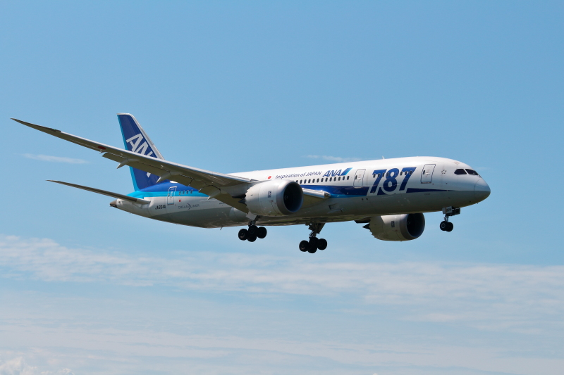 B787飛行機の着陸写真