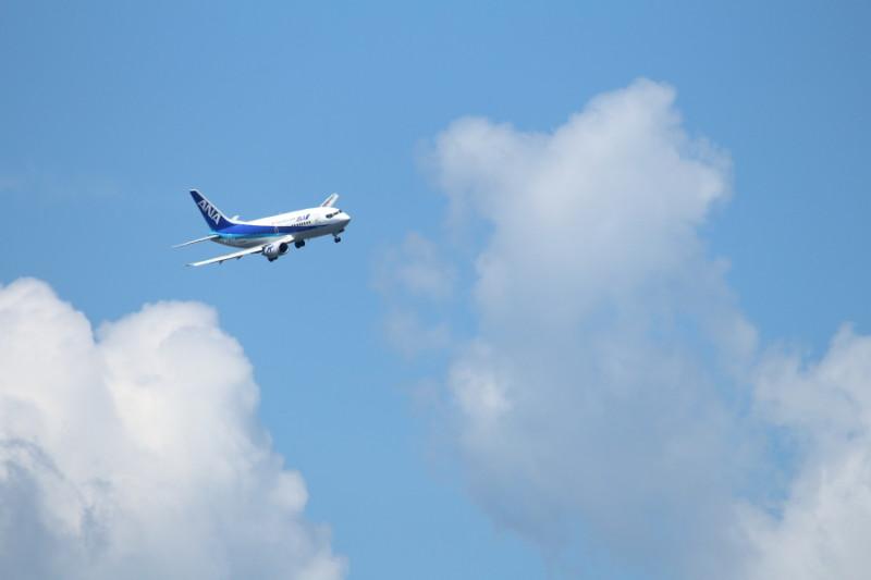 b737-500型飛行機が宮崎空港に着陸する画像