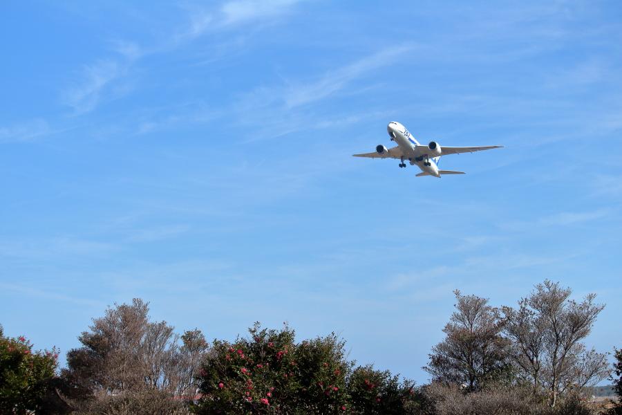 宮崎空港を西に向かうb787