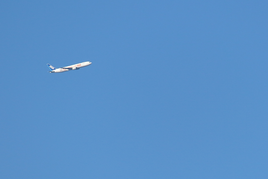 ANAスターウォーズ機B767東京に向かう
