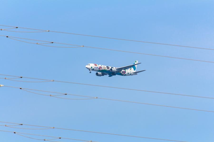 ANAの夢ジェットは宮崎空港に向かってアプローチ中