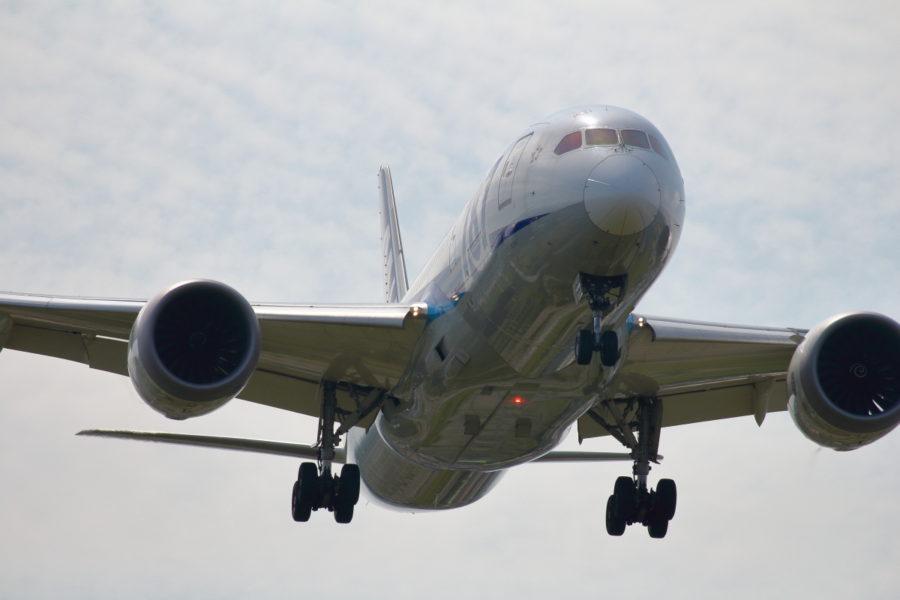 B787飛行機が宮崎空港に着陸する画像