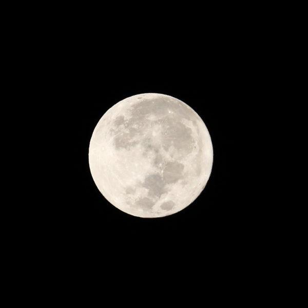 2016年11月14日地球に接近した満月