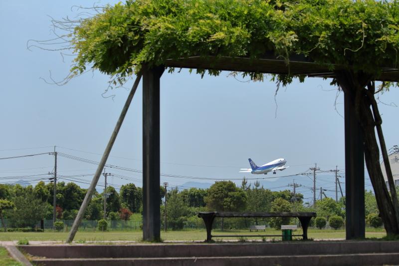 宮崎空港を離陸したANA機スーパードルフィン