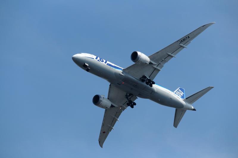 B787飛行機が宮崎空港に向かってバンクしている