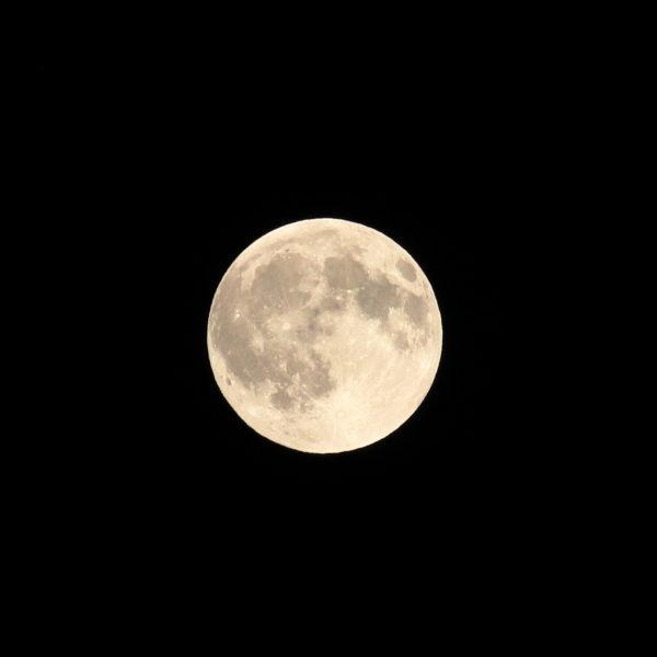 宮崎に上ってきたお月様