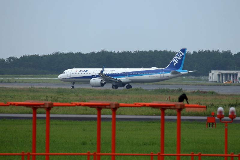 宮崎空港にANAのエアバスA321neo機が到着した飛行機の写真