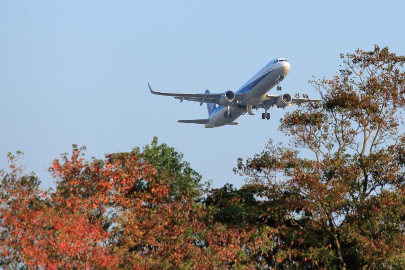 宮崎空港近くの秋色と飛行機