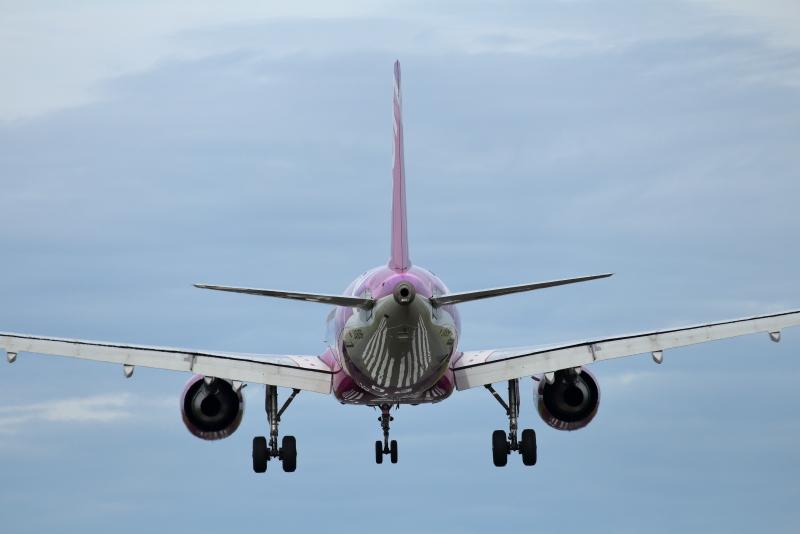 宮崎空港に着陸するピーチ機のお尻が素敵