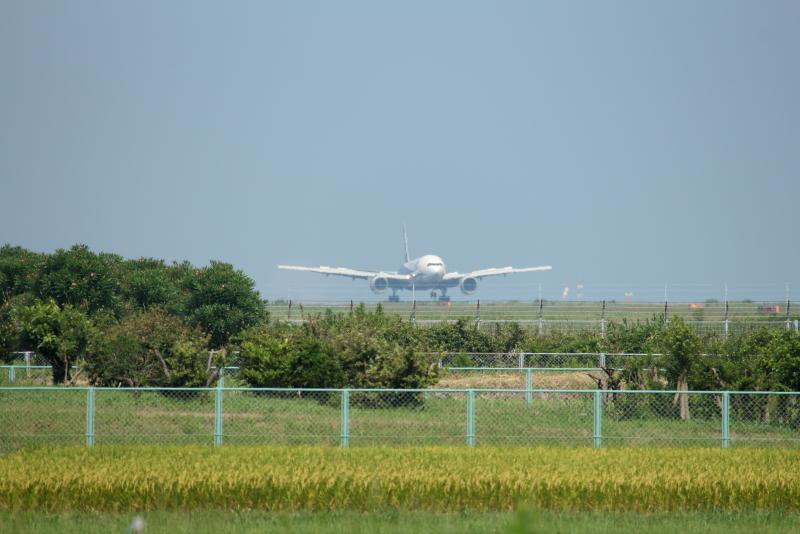 宮崎空港にやって来たB787型機と思いきやB777トリプルセブンだった