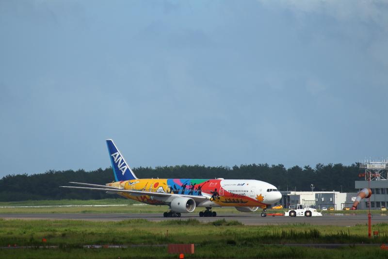 8月にも東京オリンピック特別塗装機が宮崎空港に来てくれた。