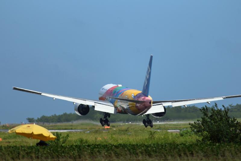 東京2020オリンピック仕様機が宮崎空港にやって来た。