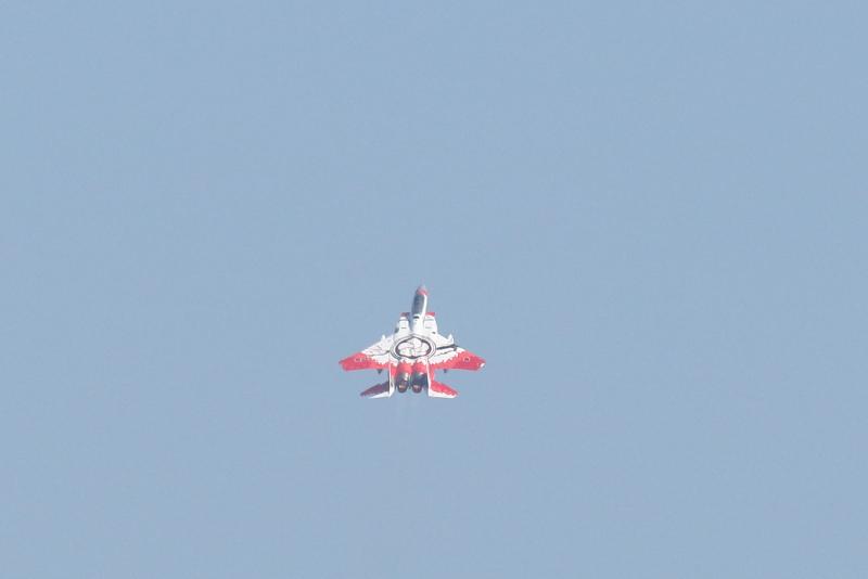 第305飛行隊の背中に特別塗装された大輪の梅が咲いた飛行機