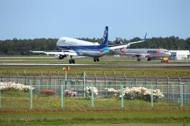 花々が咲き誇っている宮崎空港に着陸する飛行機
