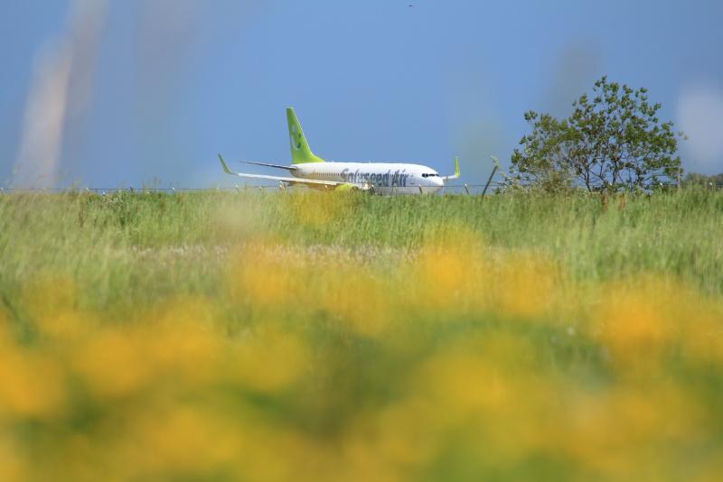 宮崎空港に到着したソラシド飛行機