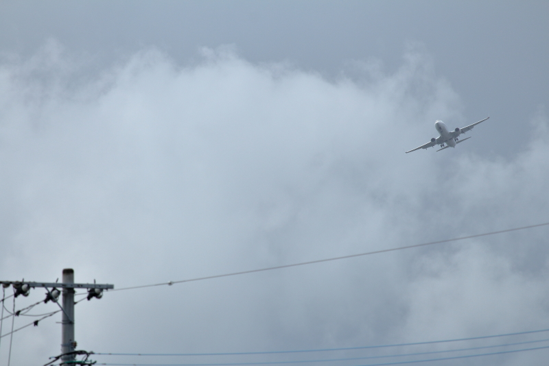 宮崎空港に西からアプローチするANAの飛行機